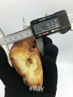 Natural Baltic Amber Stone Baltic 177 gr Bernstein kehribar kahraman genuine