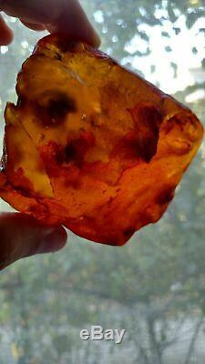 Natural Baltic Amber Succinit Stone 164 g