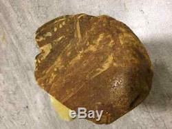 Natural Baltic Raw Amber Stone 389gr White Color Egg Yolk Butterscotch Misbaha