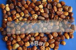 Natural Raw Rough Rare Drops Nugget Genuine BALTIC AMBER 127 gr