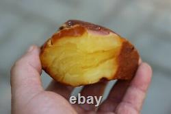 Natural Royal Baltic Amber Stone 217 Grams Raw