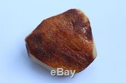 Natural Royal White Baltic Amber Stone 53 gr