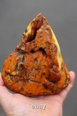 Natural Royal White Old Baltic Amber Stone 559 Grams Raw
