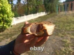 Natural baltic amber stone w 232 grams