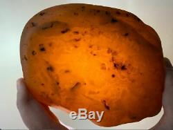Natural baltic amber stone w 392 grams