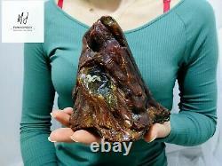 Poland 754 g Raw Natural Baltic Amber Gemstone