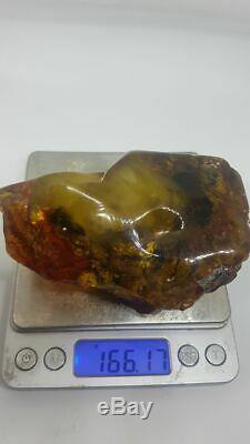 Raw Amber Stone Rock Natural 166 gr Kahrman Misbah Tesbih Baltic Tiger Bernstein