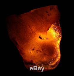 Raw amber stone 127.9g besswax butterscotch natural Baltic DIY