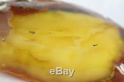 Raw amber stone 494.3g eggyolk beeswax 100% natural Baltic