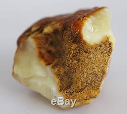 Raw amber stone 64.9 g WHITE rough natural Baltic DIY