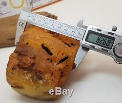 Stone Raw Amber Natural Baltic Big Huge 400g Butterscotch Old Rare White D-197