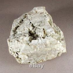 TOP Natural Baltic AMBER Stone rough 146 gr Bernstein #350 EGG YOLK BUTTERSCOTCH