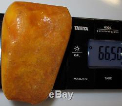 Vintage 66.50 Gm Polished Natural Genuine Baltic Amber Stone