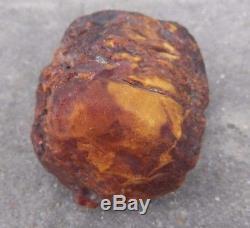 White Royal Marbled Tiger Natural Baltic Amber Stone 344.7 Gr